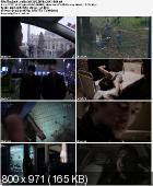 Demony / The Devil Inside (2012) PL.BRRip.XviD-B89 | Lektor PL