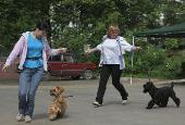 http://i40.fastpic.ru/thumb/2012/0625/20/3f757e61db0edada99a846a2002b3220.jpeg