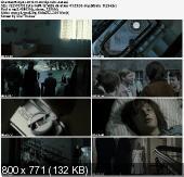 Bez wstydu / Shameless / Maskeblomstfamilien (2010) PL.BDRip.XviD-Zet  | Lektor PL