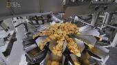 Мегазаводы: Фрито Лей / Megafactories: Frito Lay (2011) HDTVRip