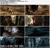 Niebezpieczny szlak / Deadfall Trail (2010) PL.DVDRip.XviD-BiDA  | Lektor PL