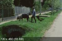 Икота / Hukkle (2002) DVDRip