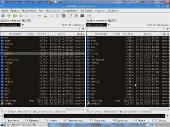 IceLinux 2.0