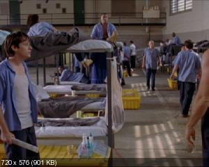 Зверофабрика / Animal Factory (2000) DVD9