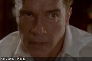 Возмещение ущерба / Collateral Damage (2002) DVD9 + DVD5