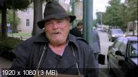 Климатическая война / Storm War (2011) BDRip 1080p / 720p + HDRip 1400/700 Mb