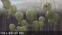 Жизнь на других планетах / Extraterrestrial (2005) HDRip