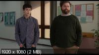 Это очень забавная история / It's Kind of a Funny Story (2010) BluRay + BD Remux + BDRip 1080p / 720p + HDRip 1400/700 Mb