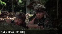 Без вести пропавшие 2: Начало / Missing in Action 2: The Beginning (1985) BD Remux + BDRip 720p + BDRip