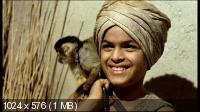Арабские приключения / Arabian Adventure (1979) DVD5