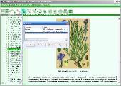 ����������� ������������� �������� ���������� ���������. ���������� ������ ������� v.4.0 [2005] ISO