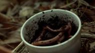 Я – это зло / Evil, I (2012) SATRip