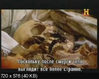 �����: ����� ������� / Zombies: A Living History (2011) SATRip