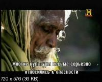 Зомби: Живая история / Zombies: A Living History (2011) SATRip