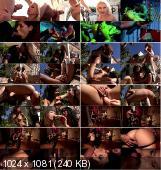 Addickted (2012/DVDRip336p) [Paradise Films] 1.37Gb