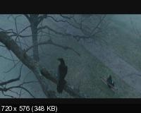 Ворон / The Raven (2012) DVD9 + DVD5 + DVDRip 1400/700 Mb