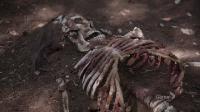 Кости / Bones (8 сезон/2012/HDTVRip/WEB-DLRip)
