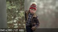 Малыш Мун [1 сезон] / Moone Boy (2012) HDTV 720p + HDTVRip