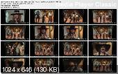 http://i40.fastpic.ru/thumb/2012/0925/20/341aea7d18d26f7a2f8d5c4e74f06a20.jpeg