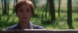 Zaklinacz koni / The Horse Whisperer (1998) 720p.BRRip.XviD.AC3.PL-STF / Lektor PL