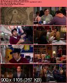 The Big Bang Theory [S06E01] HDTV.XviD-AFG