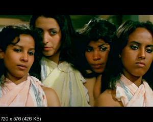 Гарем / Harem (1985) DVD9