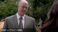 ��������� / The Mentalist (5 �����) (2012) WEB-DL 1080p / 720p + WEB-DLRip