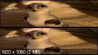 Замбезия 3D / Zambezia 3D (2012) BD Remux [3D / 2D] + BDRip 1080p